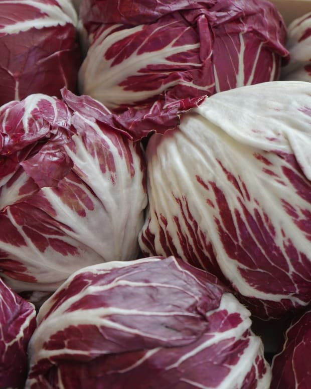all-about-radicchio-its-not-just-another-red-cabbage