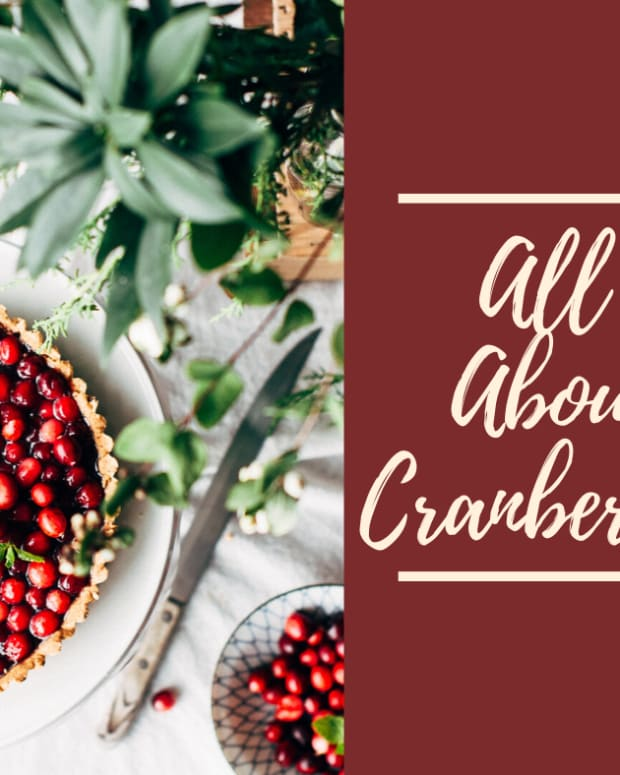 all-about-cranberries-the-original-super-fruit