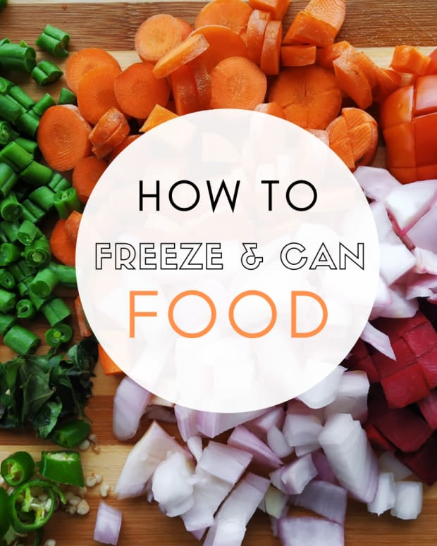 how-to-freeze-can-your-food
