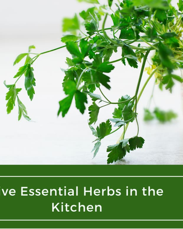 five-essential-herbs-in-the-kitchen