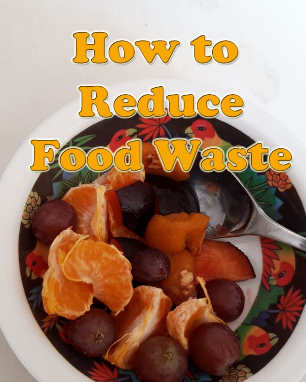 how-to-reduce-food-waste