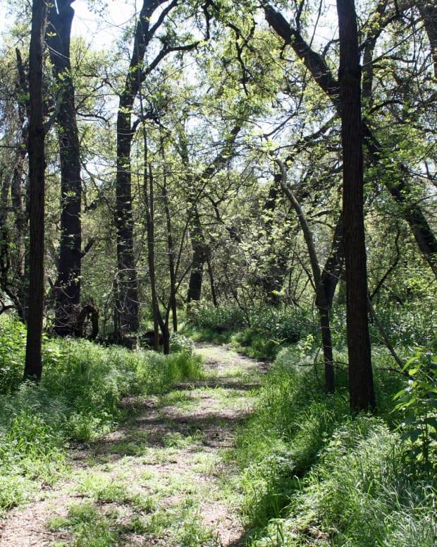 easy-hikes-in-san-joaquin-county-california