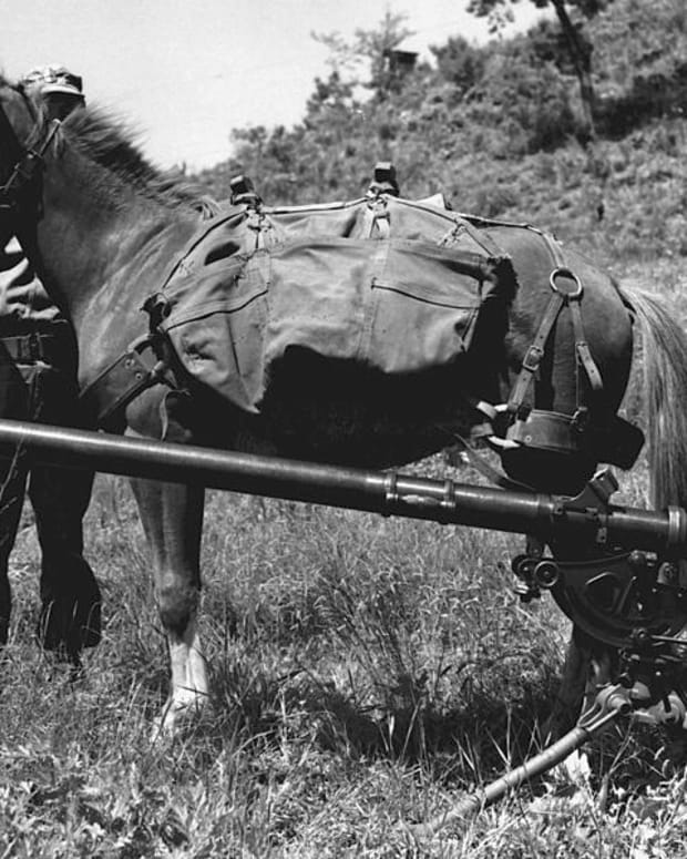 korean-war-history-reckless-the-little-mare-that-became-a-marine-war-horse