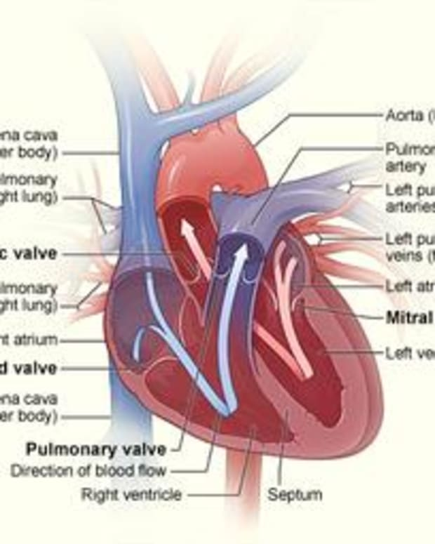 a-natural-approach-to-atrial-fibulation