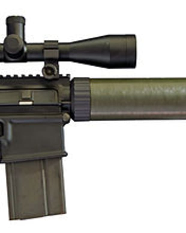 you-should-hunt-with-an-ar-style-rifle
