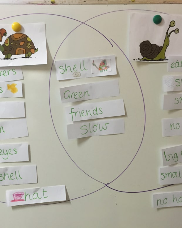 every-teachers-best-friend-venn-diagram-as-a-learning-tool