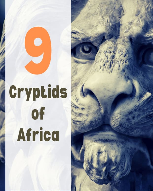 9-mysterious-monsters-of-africa