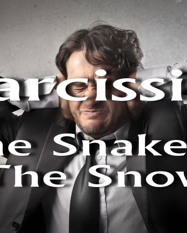 narcissist-the-snake-in-the-snow