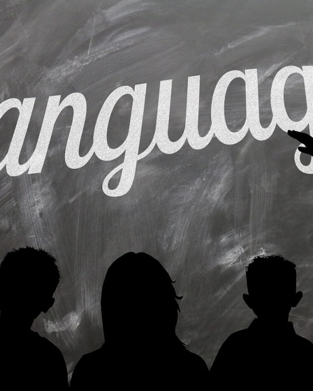 learning-a-foreign-language-online-what-you-need-to-know