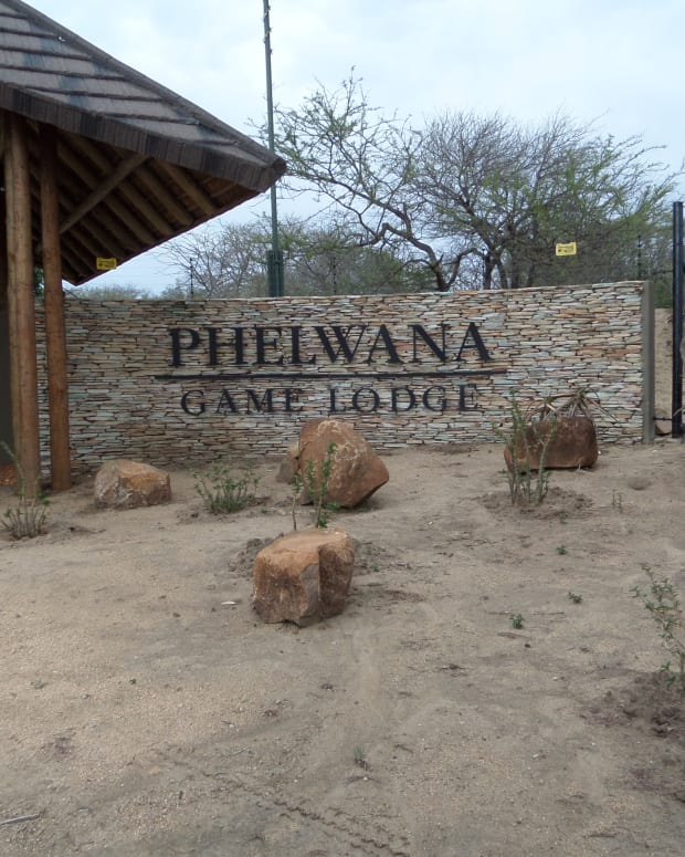 phelwana-game-lodge-hoedspruit-kruger-park-review