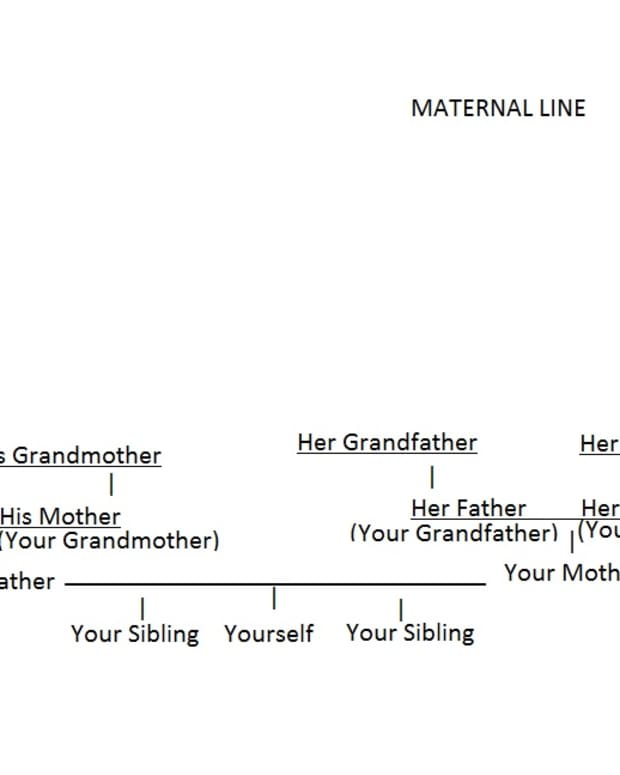 Sample DIY pedigree chart