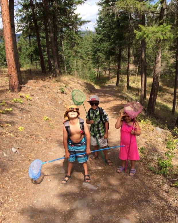 foraging-for-fun