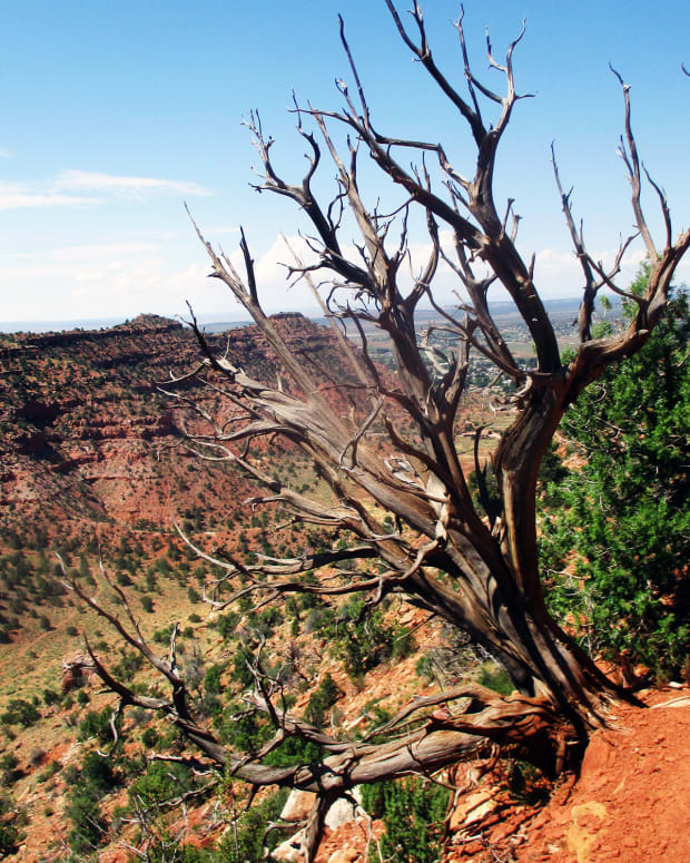 hiking-trails-in-kanab-utah