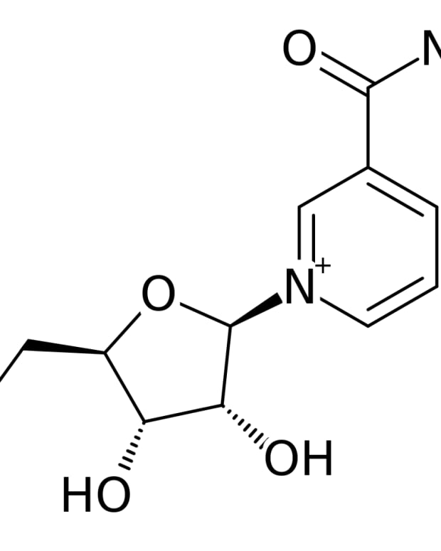 does-niagen-nicotinamide-riboside-work-against-aging