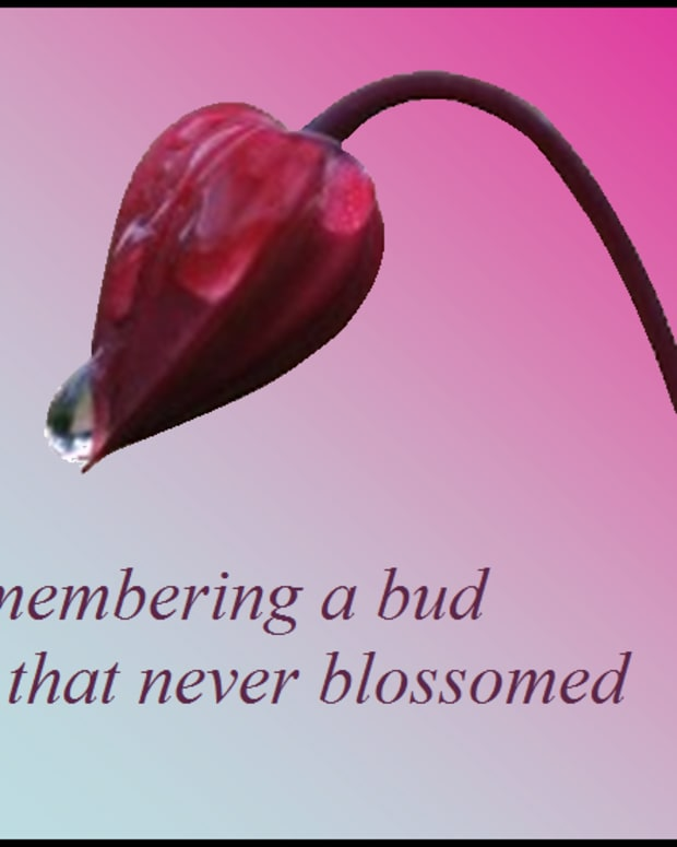 a-bud-that-never-blossomed