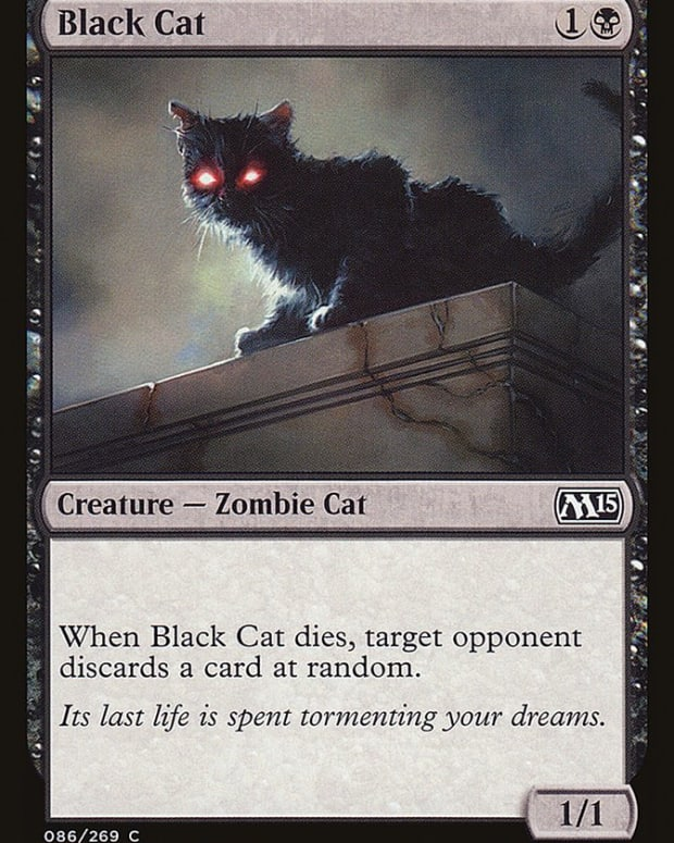 best-cat-cards-mtg
