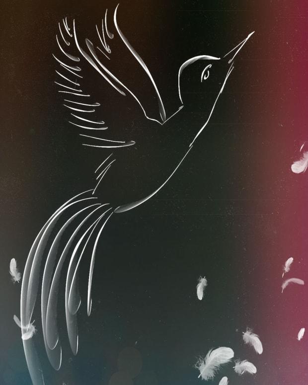 soar-little-bird