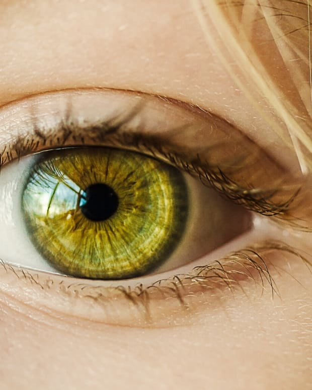 glaucoma-eye-biology-nerve-damage-and-recent-discoveries