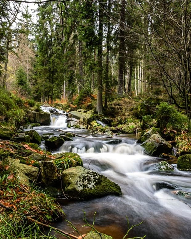our-small-rivers-and-creeks-a-part-of-americas-treasures