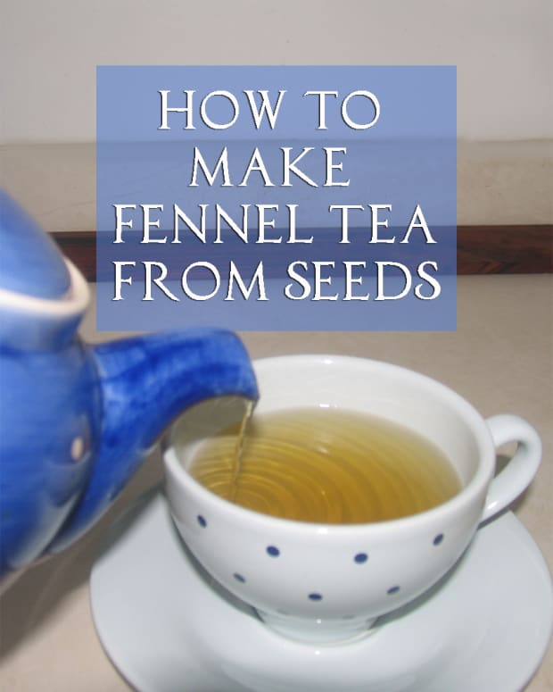 make-fennel-tea-using-seeds