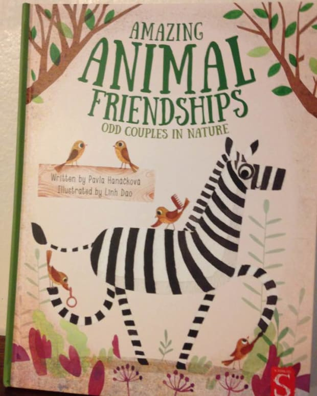 nature-friendship-and-our-ecosystems-in-a-fascinating-picture-book-with-quirky-animal-partnerships