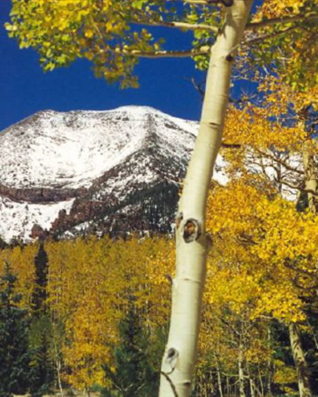 hiking-the-kachina-trail-in-flagstaff-arizona