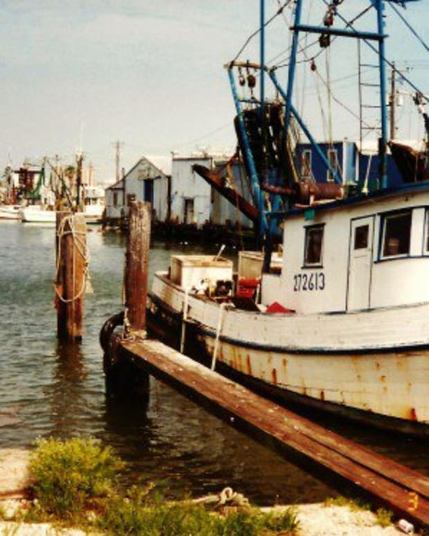 galveston-texas-importance-of-fisheries-marshes-and-estuaries