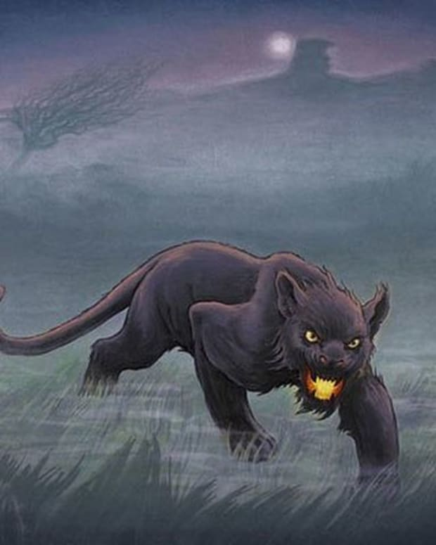 alien-big-cats-the-beast-of-bodmin-moor-and-the-beast-of-buchan