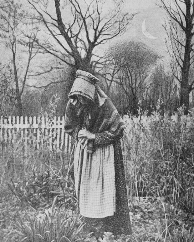 gothic-amish