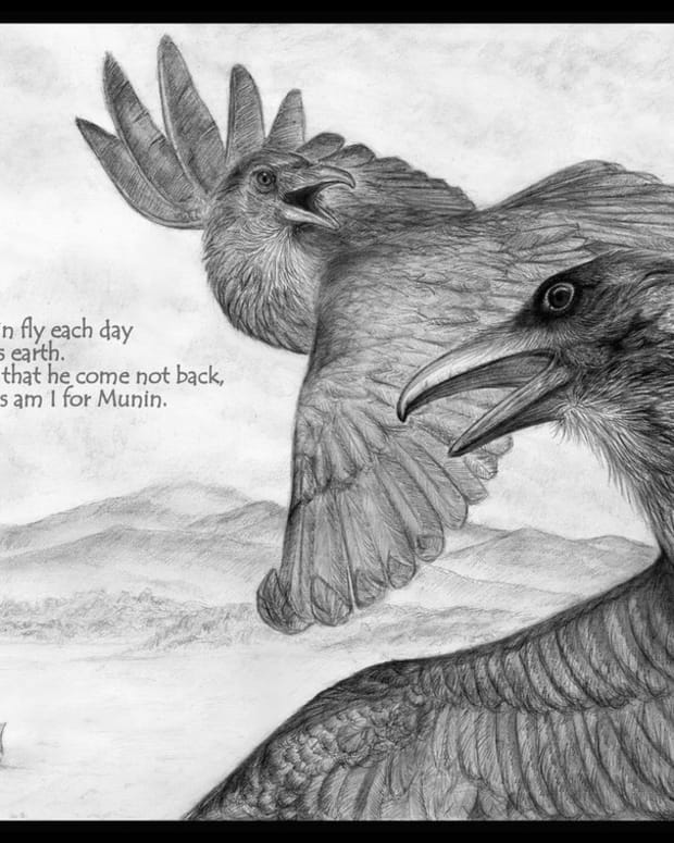 huginn-and-muninn-as-the-divine-ravens-of-odin