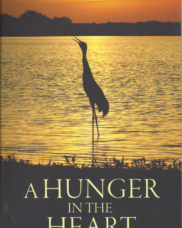 a-hunger-in-the-heart-a-book-review