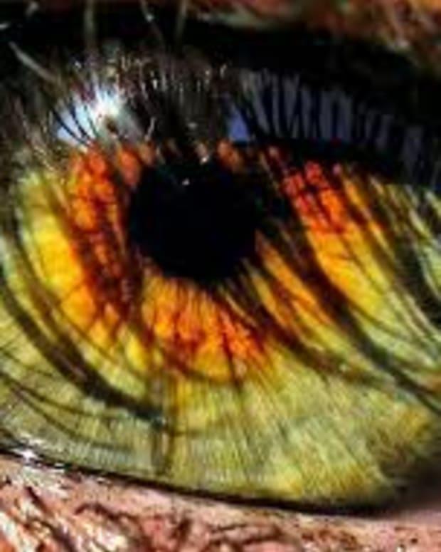 light-eyes