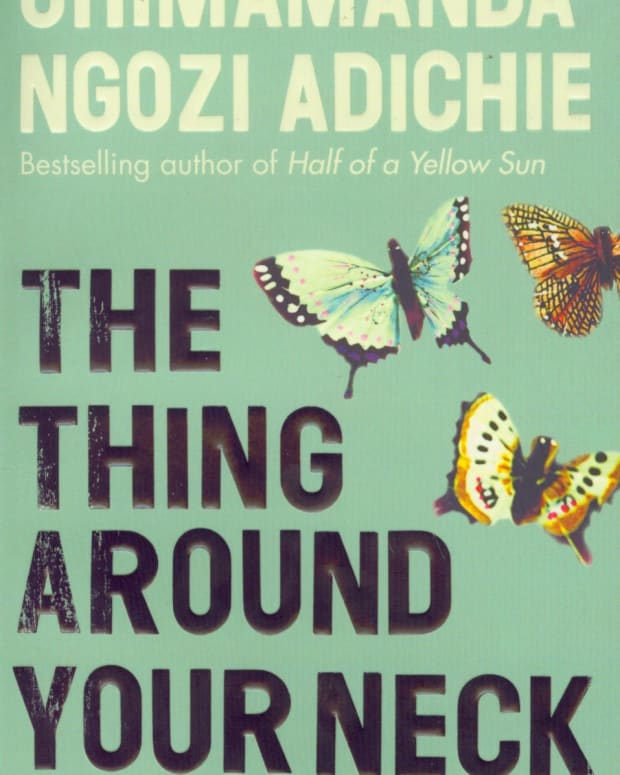 review-of-chimamanda-ngozi-adichies-the-thing-around-your-neck