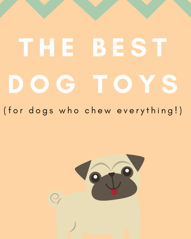 best-dog-toys-for-chewers