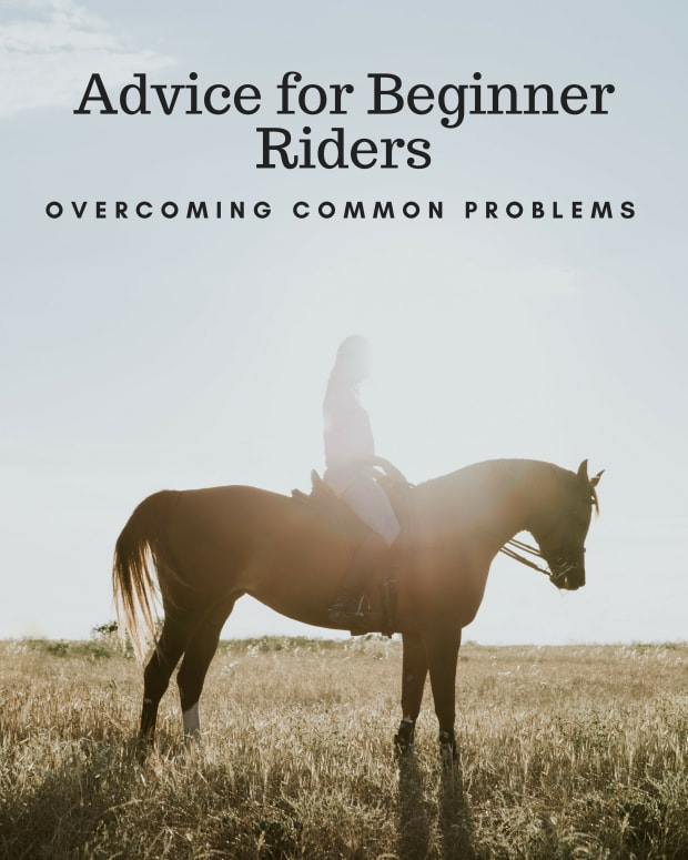 advice-for-beginners-on-common-problems-part-1
