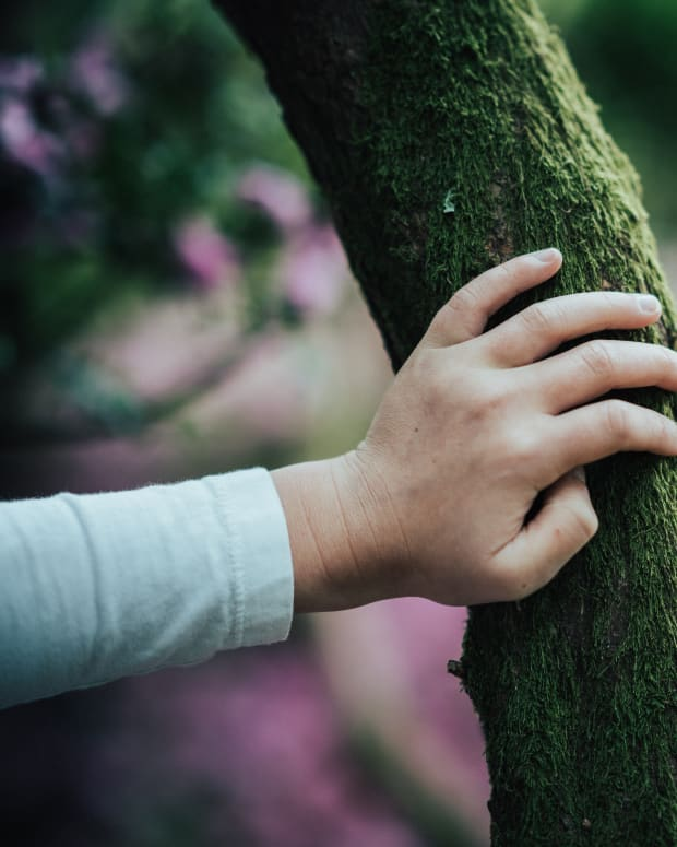 why-nature-is-good-for-your-kids