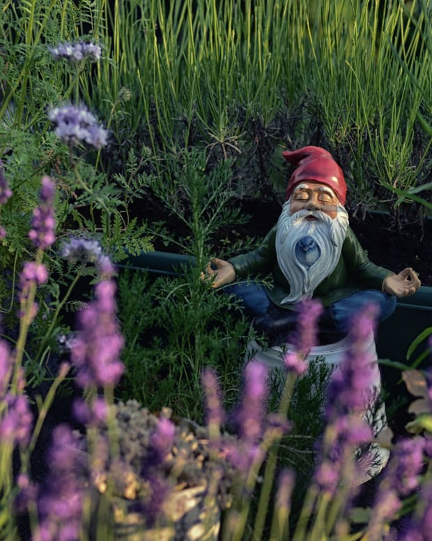 10-things-you-can-do-to-make-your-gnome-happy