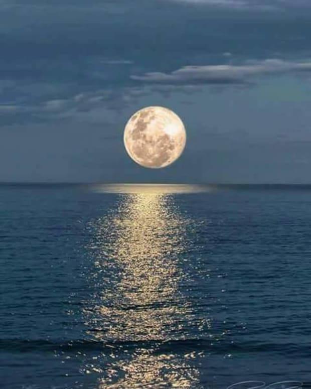 the-bashful-moon