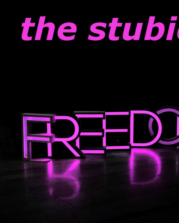 the-stupid-freedom
