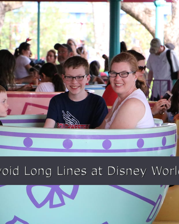 twelve-tips-to-avoid-waiting-in-line-at-disney-world