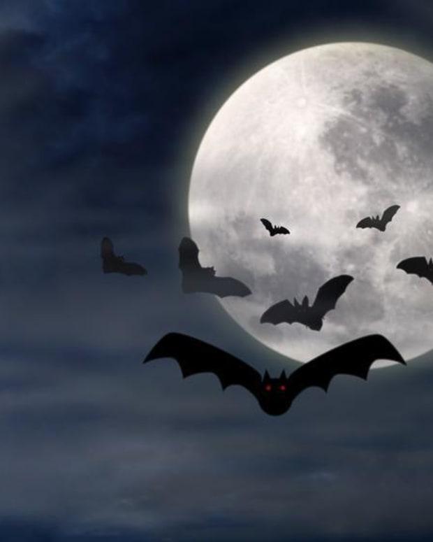 frightful-night