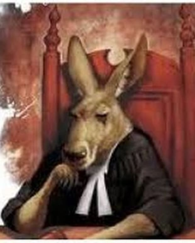 kangaroo-court-animals-on-trial