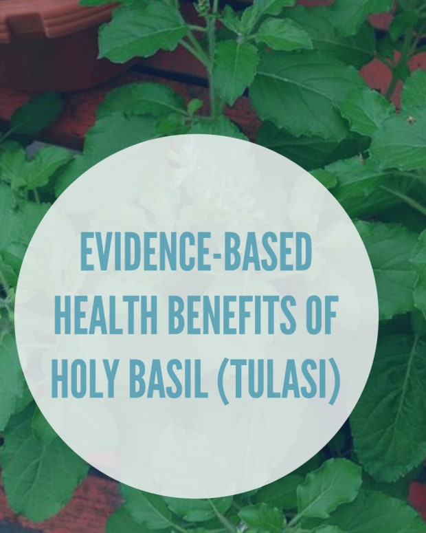 evidence-based-health-benefits-of-holy-basil-aka-tulasi