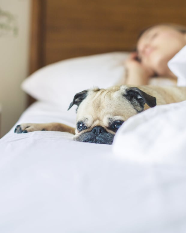 get-a-better-sleep-following-these-simple-tips