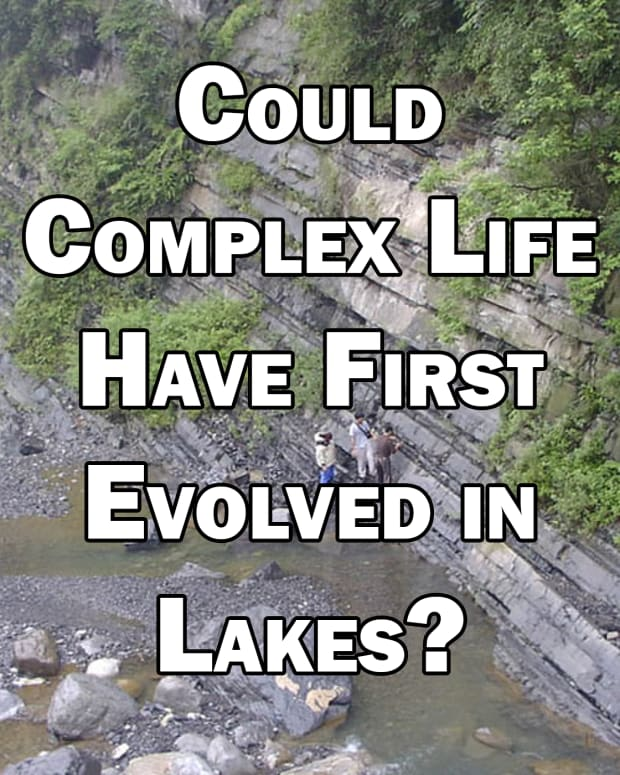 could-complex-life-have-first-evolved-in-lakes