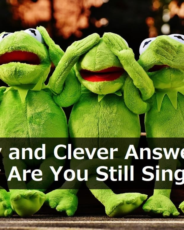 funny-and-clever-answers-to-why-are-you-still-single