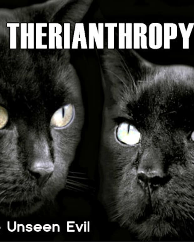 therianthropy-the-unseen-evil