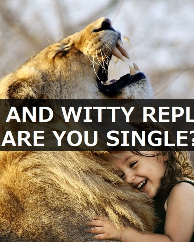 funny-and-witty-replies-to-are-you-single