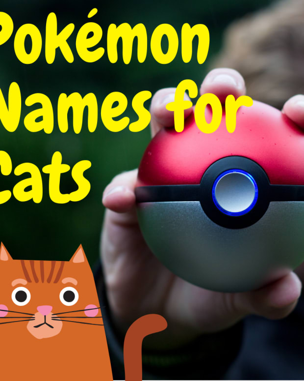 100-pokemon-cat-names