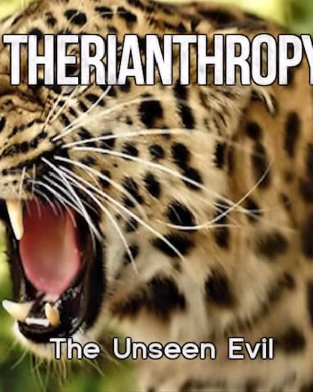 therianthropy-the-unseen-evil-6